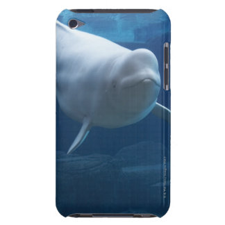 Beluga whale (Delphinapterus leucas) Barely There iPod Cases