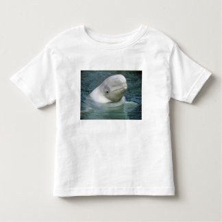 Beluga Whale, Delphinapterus leucas), Captive Toddler T-shirt