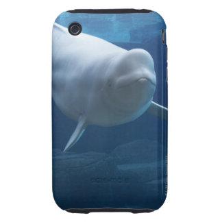 Beluga whale (Delphinapterus leucas) Tough iPhone 3 Covers
