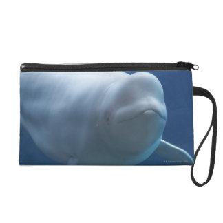 Beluga whale (Delphinapterus leucas) Wristlet Purse