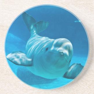 Beluga Whale Drink Coaster