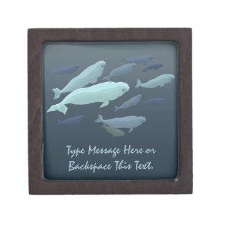 Beluga Whale Gift Box Beluga Whale Jewelry Box