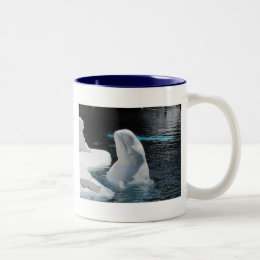 Beluga Whale Gifts Two-Tone Coffee Mug
