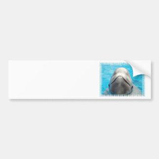 Beluga Whale Grin Bumper Sticker Car Bumper Sticker