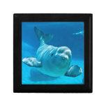 Beluga Whale Jewelry Box