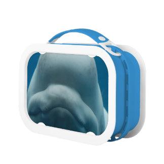 Beluga Whale Lunch Box