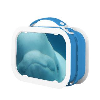 Beluga Whale Lunchbox