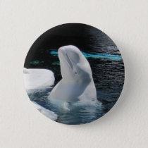 Beluga Whale Pin