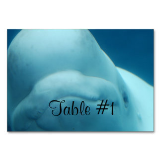 Beluga Whale Table Cards