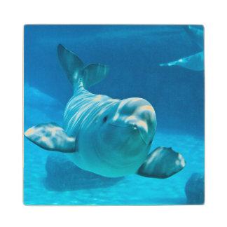 Beluga Whale Wood Coaster