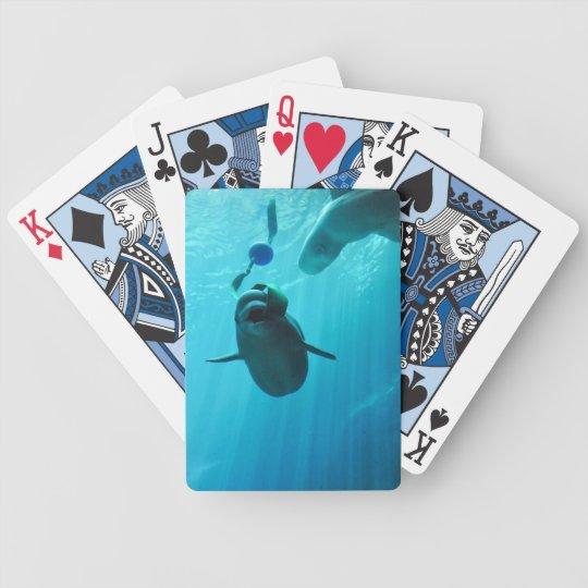 Beluga Whales Bicycle Playing Cards