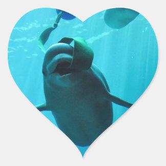 Beluga Whales Heart Sticker