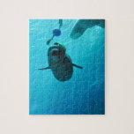Beluga Whales Puzzles