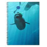 Beluga Whales Spiral Notebooks