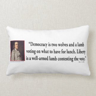 Ben Franklin en el control de armas Cojines