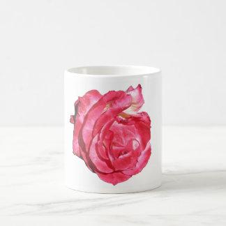 Ben Sandy Rose 023 Mugs