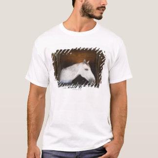 benalamadena costa, malaga, costa del sol, 2 T-Shirt