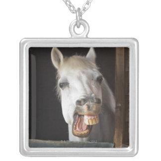 benalamadena costa, malaga, costa del sol, silver plated necklace