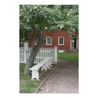 Bench and Apple Tree Poster