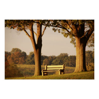 Bench at Sunset Poster
