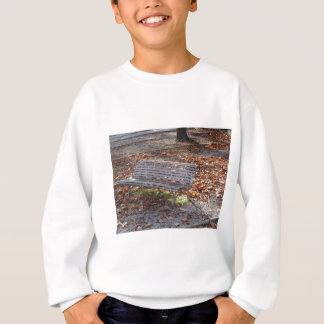 Bench in autumn park with dead leaves sweatshirt
