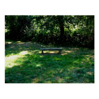 Bench In The Clearing Of The Forest Postcard