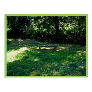 Bench In The Clearing Of The Forest Postcards