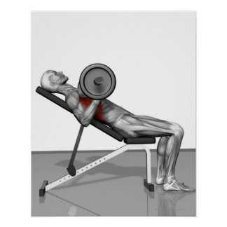 Bench Press Incline Poster