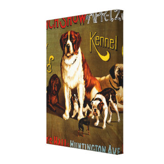 Bench Show. New England Kennel Club Canvas Print