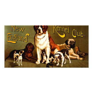 Bench Show. New England Kennel Club Card