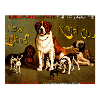 Bench Show. New England Kennel Club Postcard