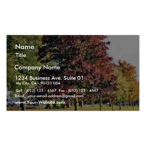 Bench Under The Tree In Park In Autumn Business Card Template