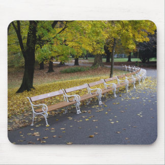 Benches Mouse Pad