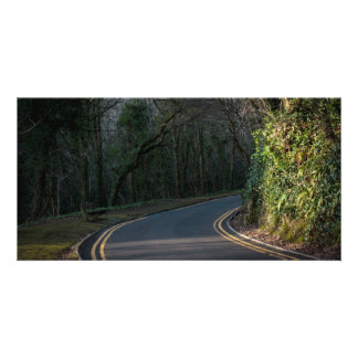 Bend in the Road Card Photo Greeting Card