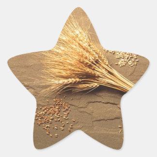 Bendiciones de Lammas Pegatina En Forma De Estrella
