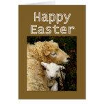 Bendiciones felices de Pascua - oveja y cordero Tarjeton