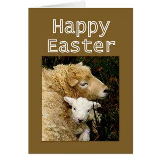 Bendiciones felices de Pascua - oveja y cordero Tarjeta De Felicitación