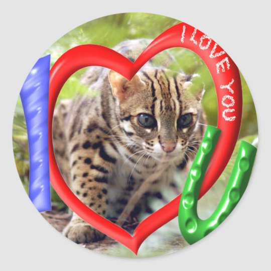 bengal-cat-00060-85x85 classic round sticker