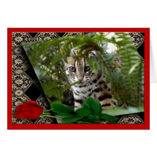 bengal-cat-00106-65x45 card