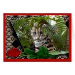 bengal-cat-00106-65x45 tarjeta de felicitación