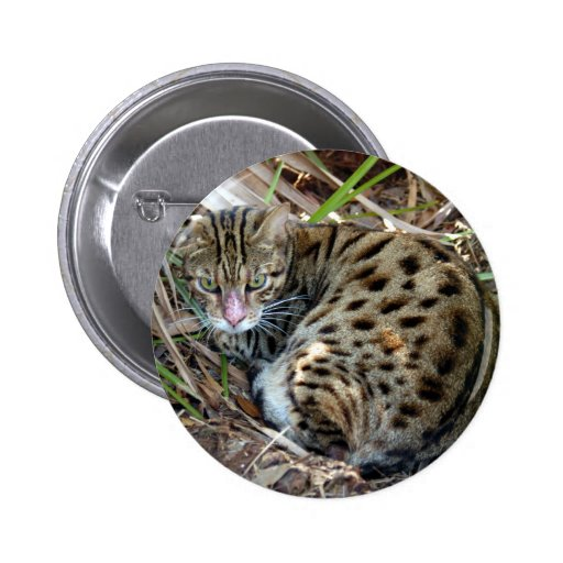 Bengal Cat 005 2 Inch Round Button