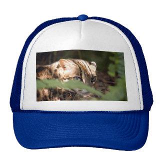 Bengal Cat 008 Trucker Hat
