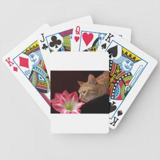 Bengal Cat Amaryllis Digital Photograph Bicycle Playing Cards