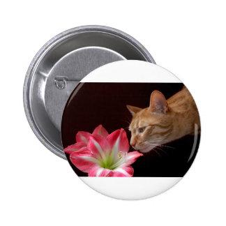 Bengal Cat Amaryllis Digital Photograph Button