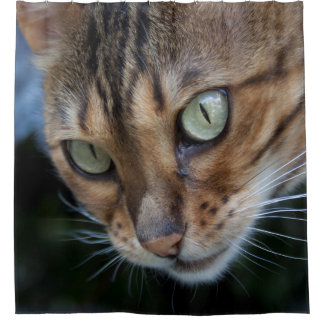 Bengal Cat Close-Up Shower Curtain