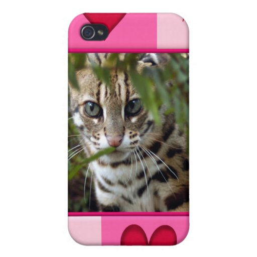 Bengal Cat  Cover For iPhone 4