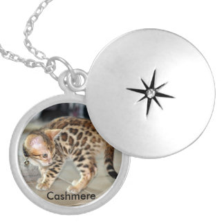 Bengal Cat Kitten photo locket necklace round