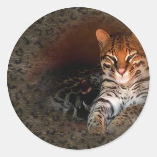 Bengal Cat/Kitty Stickers