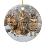 Bengal Cat Ornaments