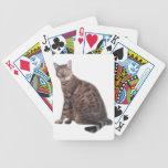 Bengal Cat Playing Cards